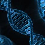 Catholic Bioethics for High School Students