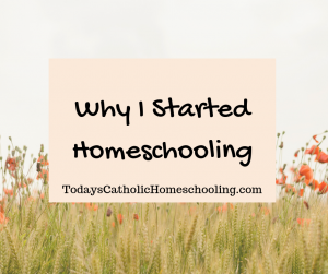 Why I Started Homeschooler