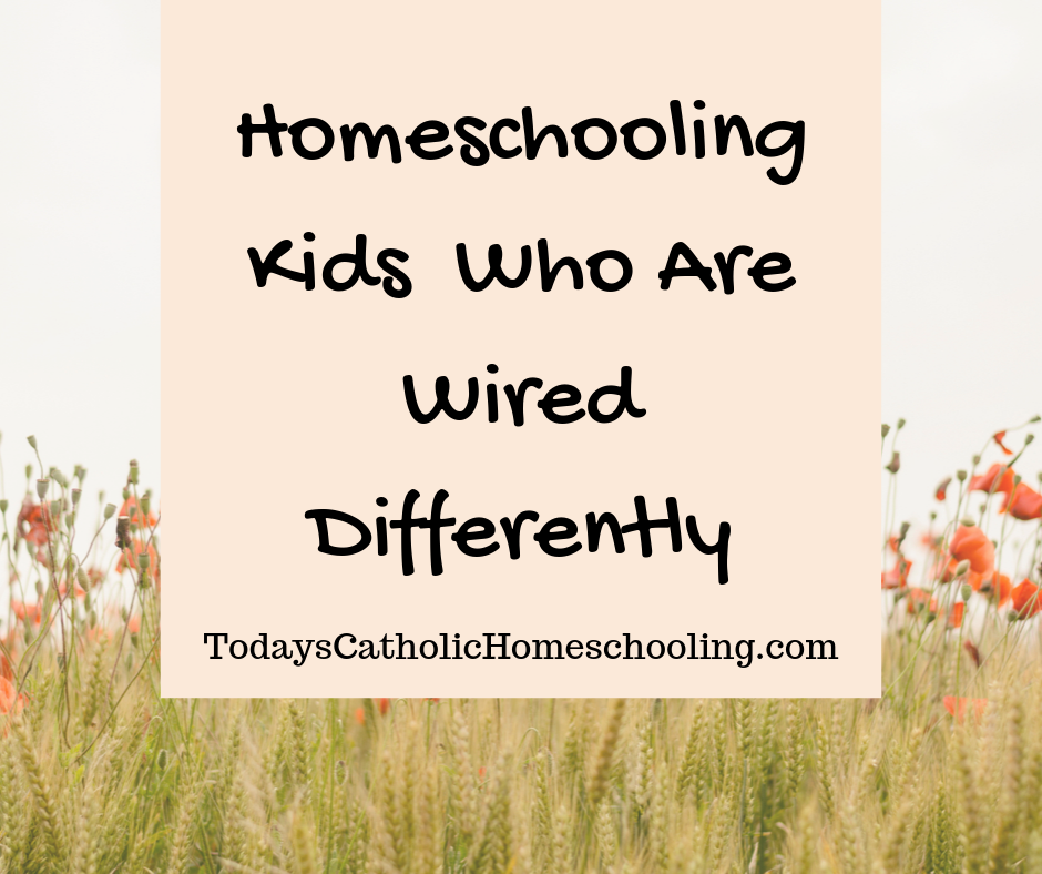 Homeschooling Children Who Are Wired Differently